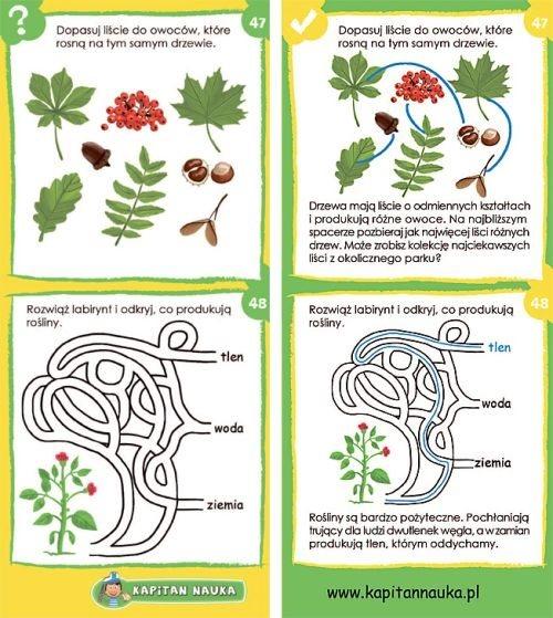 Przyroda w zagadkach
