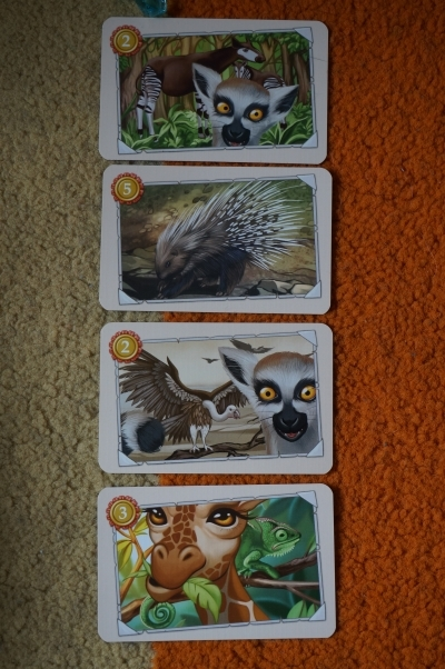 Przez Afrykę karty